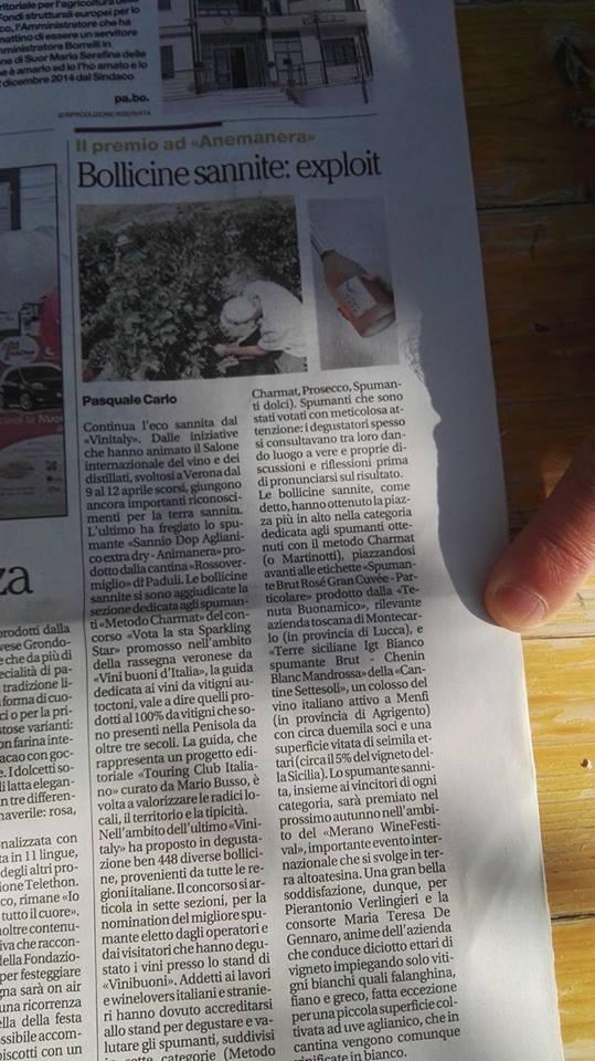 Articolo de Il Mattino su Animanera